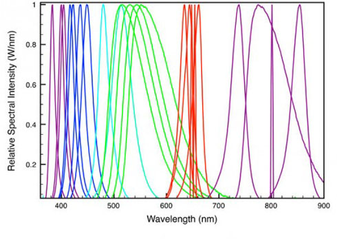 spectra-graph-520x375